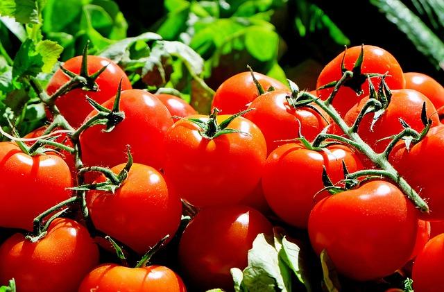 手作りトマトソース