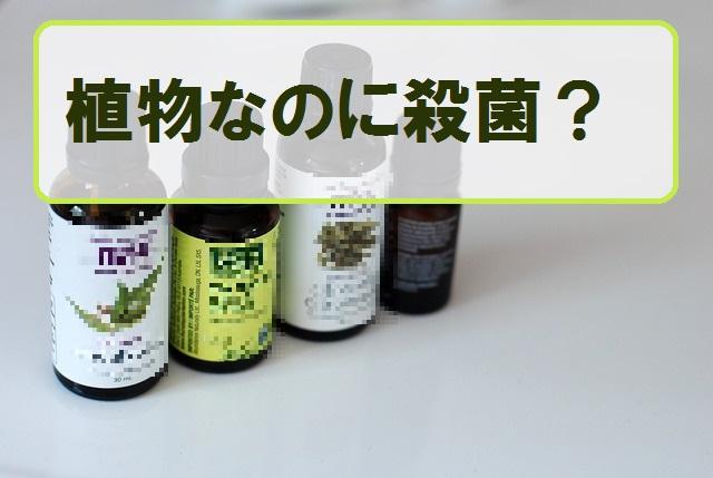精油の抗菌作用って何?本当に抗菌できるのか