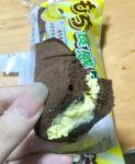 ココアのもち食感ロール チョコバナナのレビュー